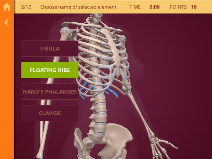 Descargar gratis Anatomy: Sistema didáctico sobre la anatomía con ...