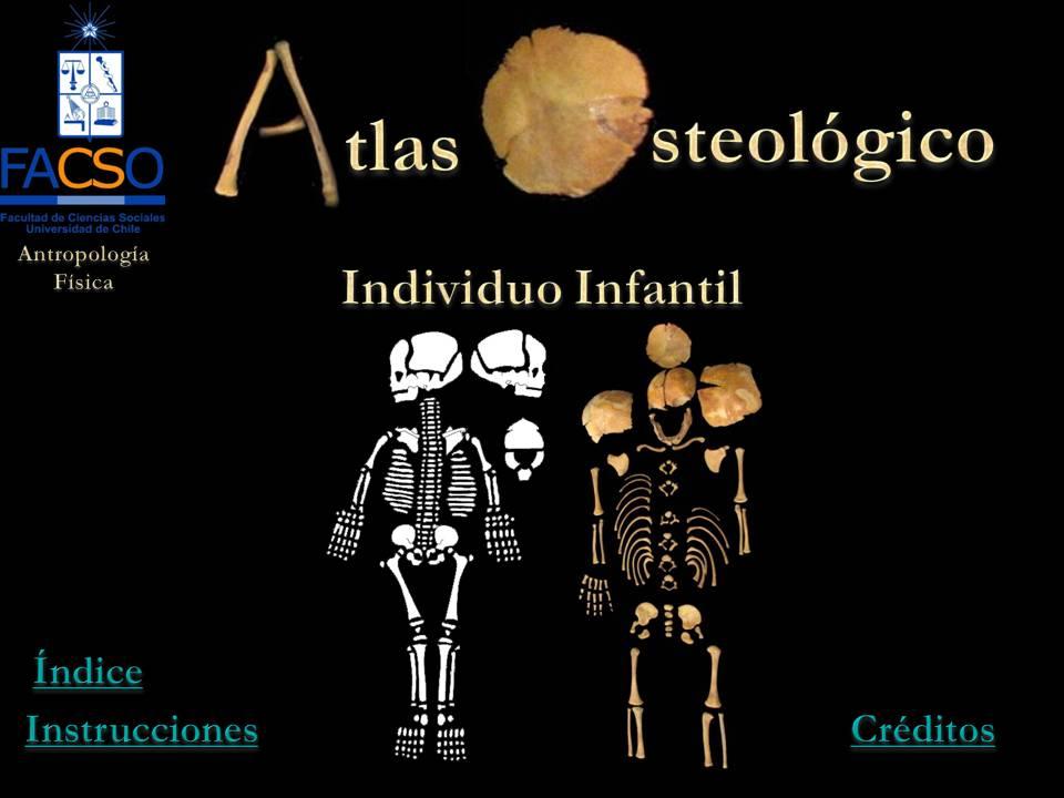 Atlas Osteológico Banana-soft.com