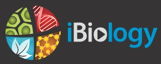 iBiology banana-soft.com