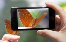 5 excelentes app gratis para fotógrafos banana-soft.com